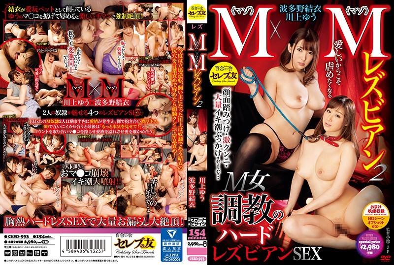 CESD-593 best jav M x M Lesbian Series 2 Yu Kawakami And Yui Hatano