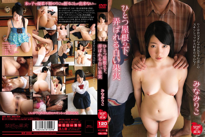 KDKJ-009 free jav porn Riko Minami, White Fruit Teased Under One Roof