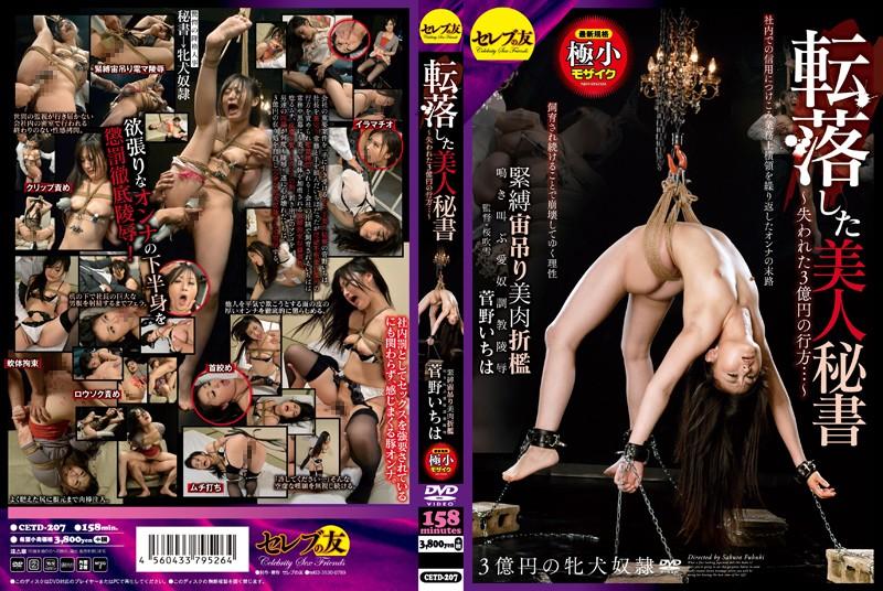 CETD-207 Javout Ichiha Sugano The Fallen Beautiful Secretary- Where The Lost 300 Million Yen Went…- The Suspended S&M Punishment