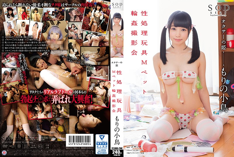 STAR-757 jav idol Little Bird In The Forrest – Photoshoot Of Gang Banging The M Pet Sex Toys