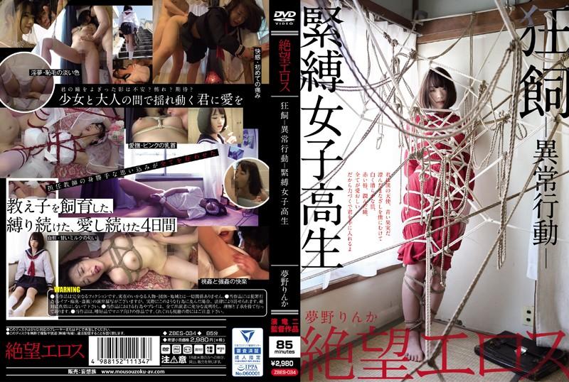 ZBES-034 japanese porn Eros Company Of Despair Rinka Yumeno Insane And Abnormal Domestication Bondage Honor Roll