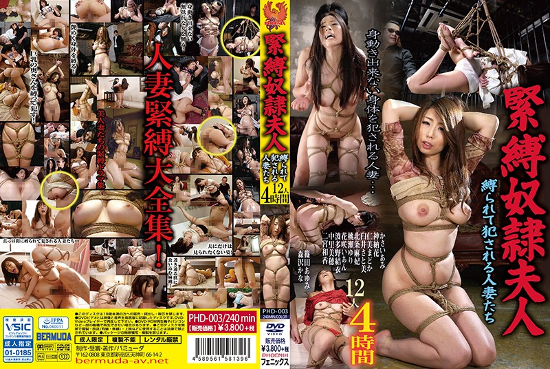 PHD-003 japanese porn streaming Bondage Slave Ladies. Married Women Get Tied Up And Raped. 12 Women, 4 Hours