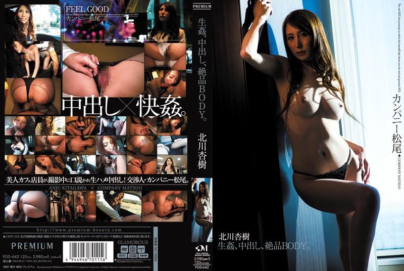 PGD-642 jav free Rape Creampie On Her Perfect Body . Anju Kitagawa