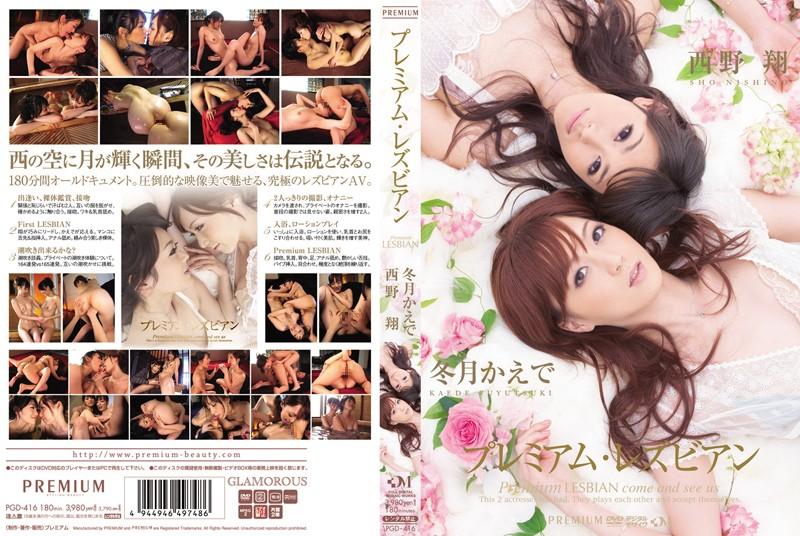 PGD-416 jav free Premium Lesbian Kaede Fuyutsuki Sho Nishino