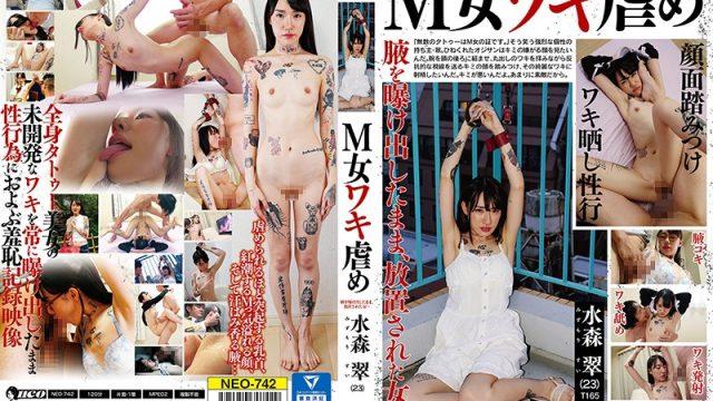NEO-742 VJav Masochistic Woman Armpit Bullying – Sui Mizumori