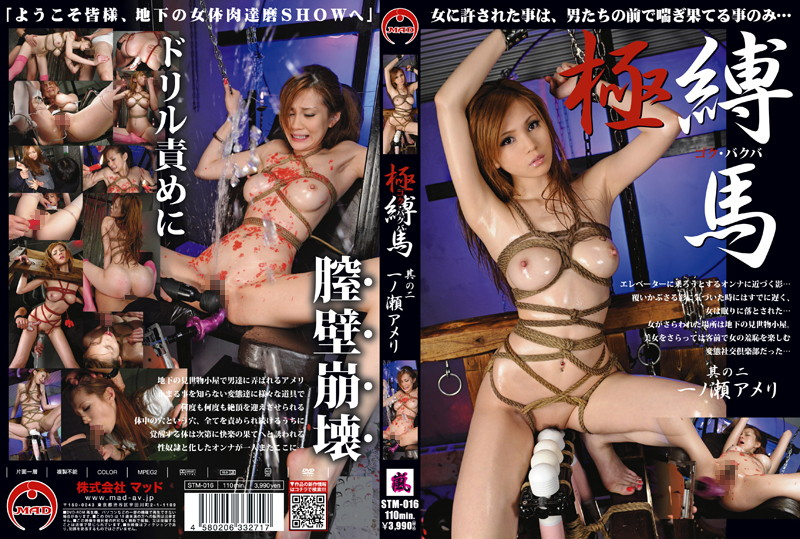 STM-016 jav actress Wild and Tied – Ameri Ichinose