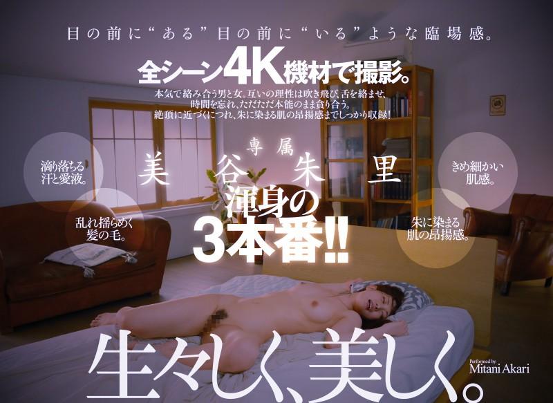 DASD-770 jav Lust Bared In Sweat And Love Juice Dripping Passionate Fuck. Standard Edition Akari Mitani