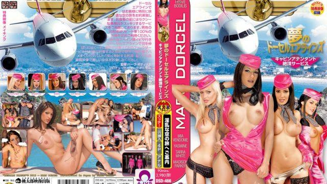 DSD-466 javporn Dream Dorcel Airlines – Flight Attendants' Free Orgasm Service