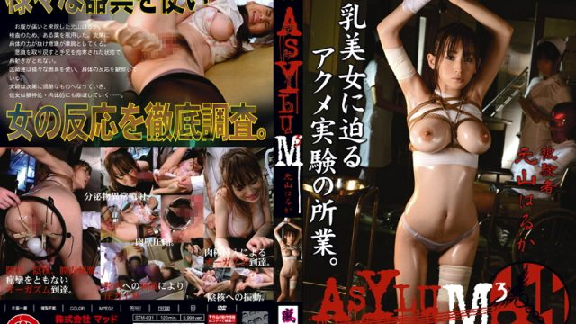 STM-031 xxx jav ASYLUM 3 Haruka Motoyama