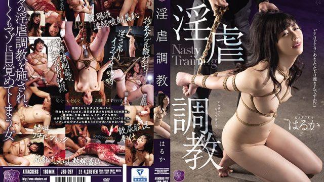 JBD-267 free jav Breaking In A Slut Haruka